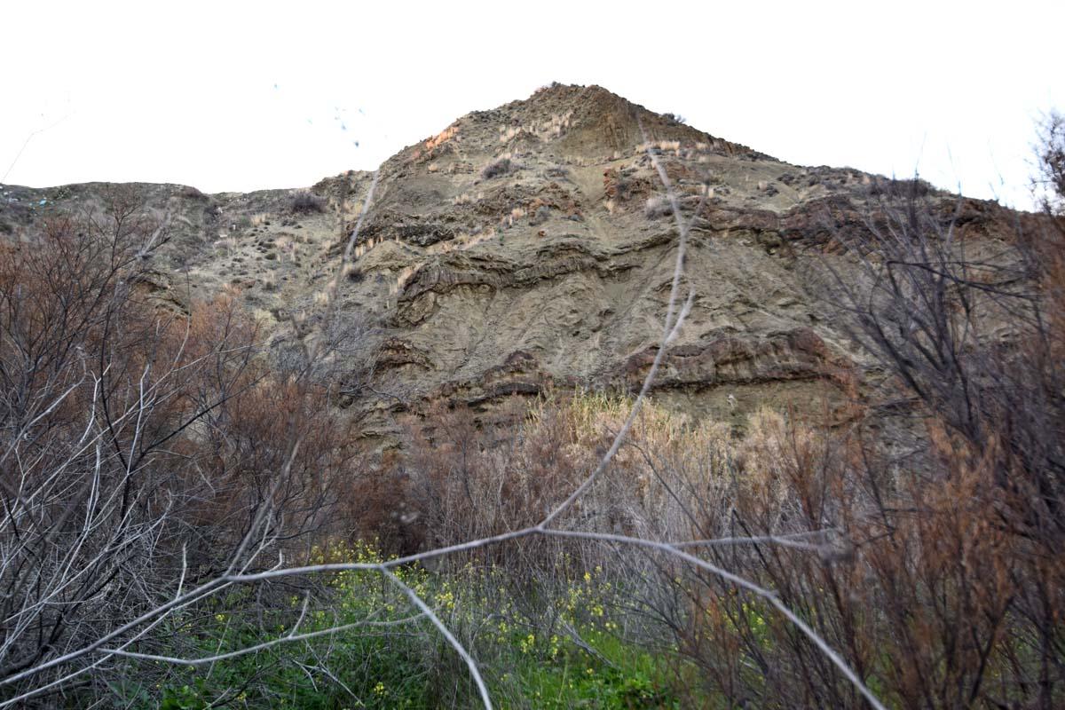 geomorfomata1